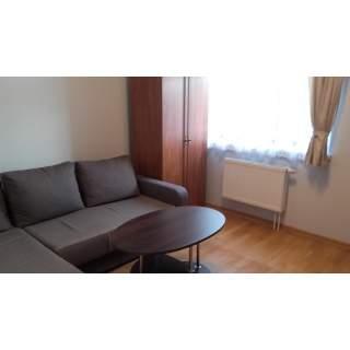 Vilnius, Gineitiškėse, Atžalyno g., 2 kambarių buto nuoma nuosavame name